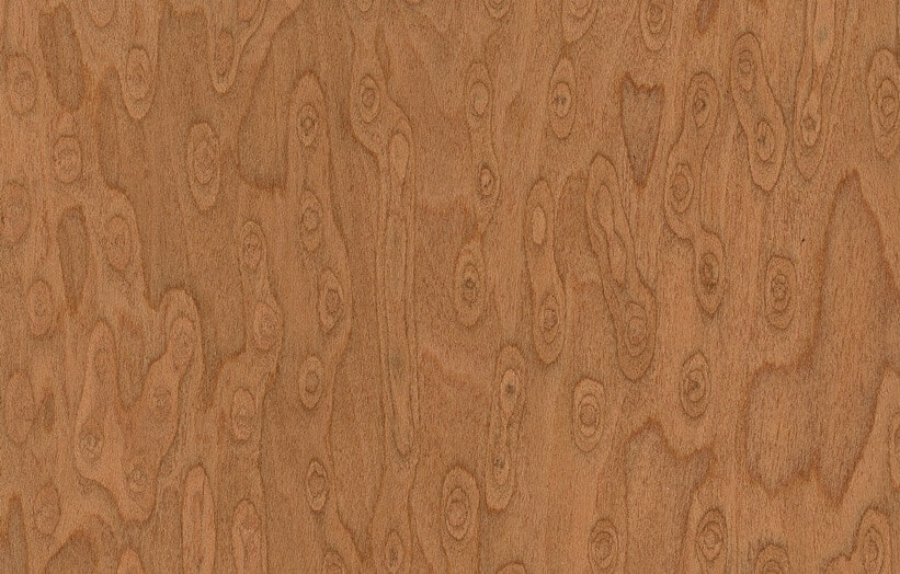 birdseye maple veneer
