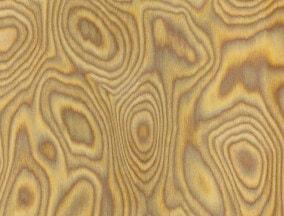 Oak burl veneer