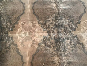 walnut burl matched veneer